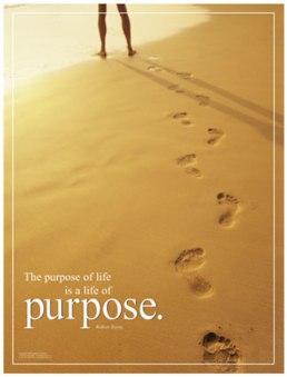 purpose-poster