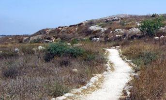 path_journey